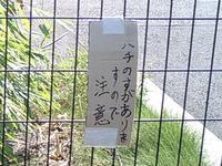 hachinosuu_0.jpg