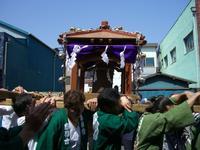 kanamara2008_4.jpg