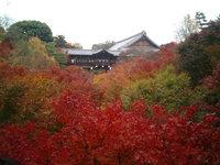 tofukuji_01.jpg
