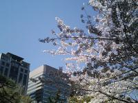 hibiya2008_3.jpg