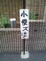 shobensuruna.jpg